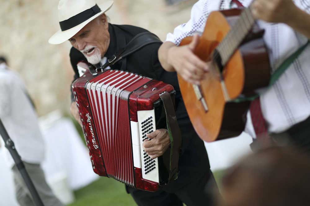 musician accordion for wedding reception