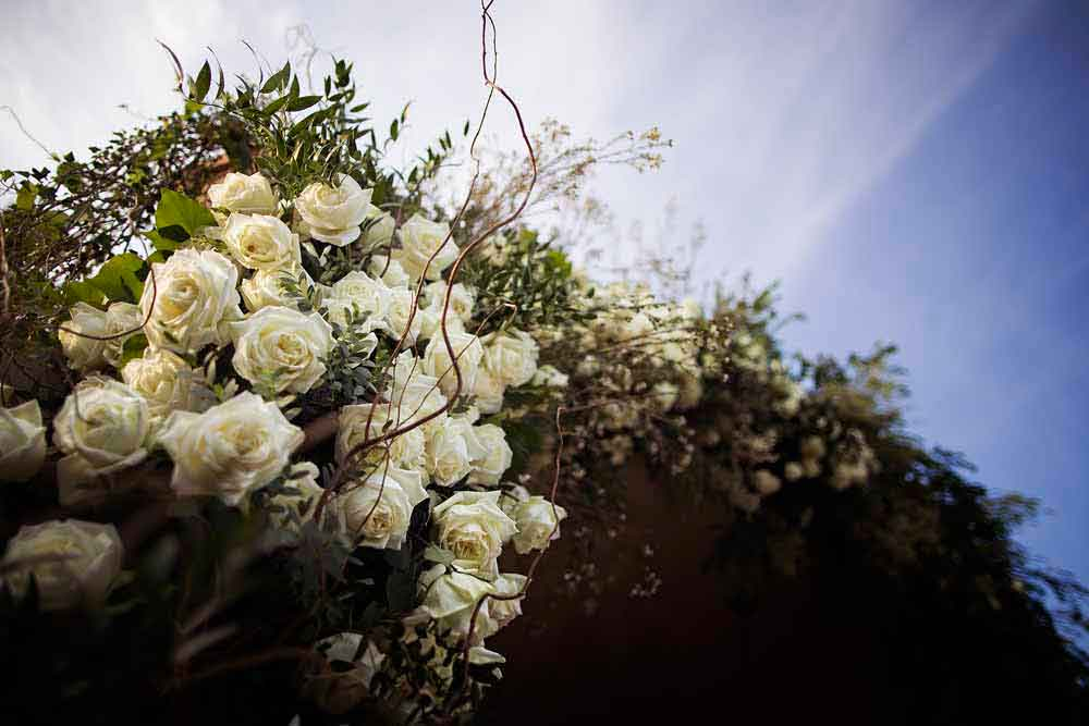 white roses flower wedding